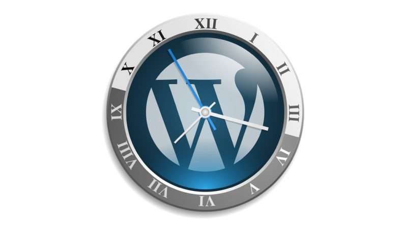 pohitrite delovanje vaše wordpress spletne strani